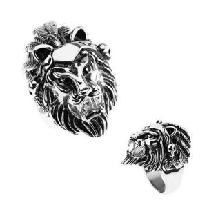 Inel argintiu din oţel 316L, cap de leu, bentiţă cu pene, craniu - Marime inel: 56 imagine