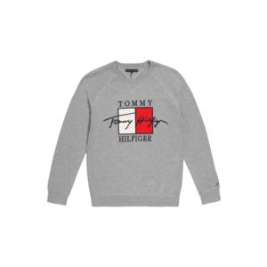 TOMMY HILFIGER Bluză de molton 'SIGNATURE' gri / roșu / alb / navy imagine