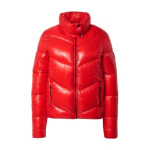 Superdry Geacă de iarnă 'Brooklyn' roșu imagine