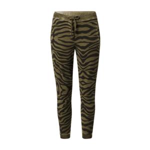 True Religion Pantaloni 'Zebra' negru / oliv imagine