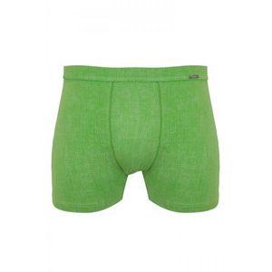 Boxeri pentru bărbați 220 green imagine